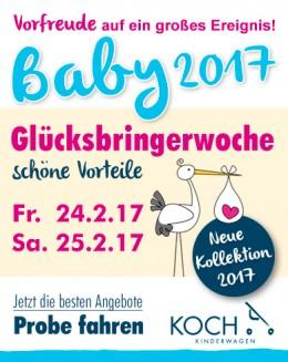 Koch_Kinderwagen_Anz_KW_08-2017